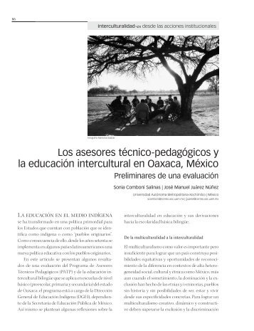Los asesores técnico-pedagógicos y la educación intercultural en ...