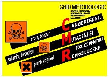 Ghid metodologic pentru prevenirea riscurilor legate de expunerea ...