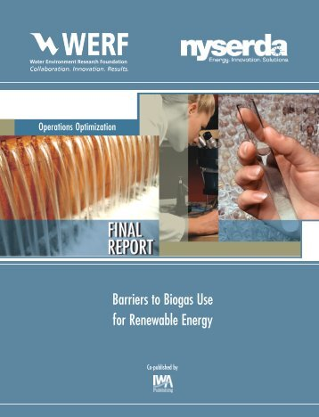 Barriers to Biogas Use for Renewable Energy - Water Environment ...