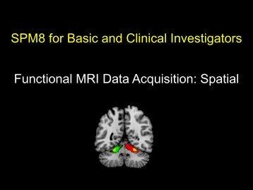 Spatial - Neurometrika