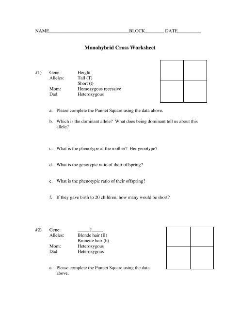 Monohybrid Cross Worksheet - Warren County Schools