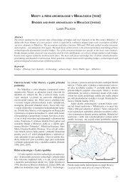 Ostrovní hrady Velké Moravy a jejich přírodní podmínky Říční ...