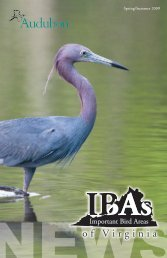 Spring/Summer 2009 (PDF) - Richmond Audubon Society