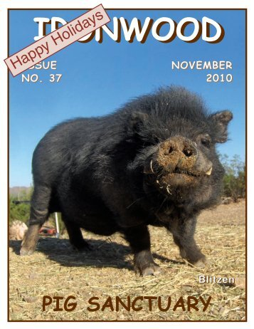 Ironwood Pig Sanctuary