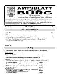 AMTSBLATT 5-2013.pdf - Stadt Burg