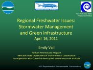 Regional Freshwater Issues: Stormwater Management and Green ...