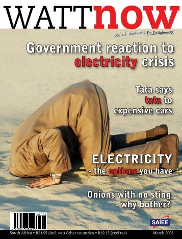 Government reaction to electricity crisis - Watt Now Magazine