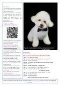 TOILETTAGE MAGAZINE Janvier 2015 - Page 3