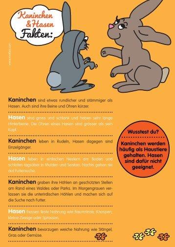 Kaninchen - Motlies