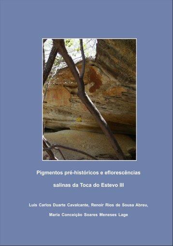 Pigmentos pré-históricos e eflorescências salinas da Toca do ...