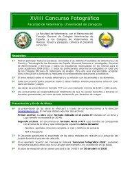 XVIII Concurso Fotográfico - Facultade de Veterinaria de Lugo