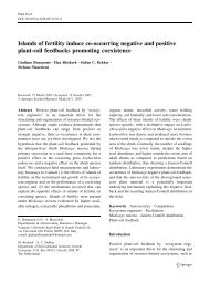 Islands of fertility induce co-occurring negative and positive plant ...