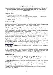 1 KITÖLTÉSI ÚTMUTATÓ Az Európai Közösség ... - Nemzeti Adó