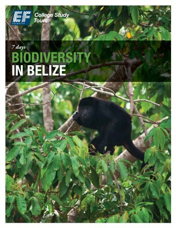 BIODIVERSITY IN BELIZE - EF College Study Tours