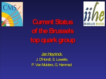 Current Status of the Brussels top quark group - IIHE