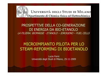 Prof. Forni - Dipartimento di Chimica Fisica ed Elettrochimica