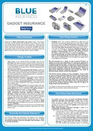 Policy Summary Your Policy Covers Your Policy ... - Blue Insurances