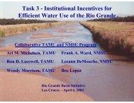Task 3 - 2013 Rio Grande Basin Initiative Meeting - Texas A&M ...