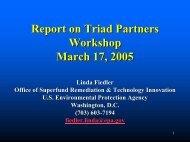 Report on Triad Partners Workshop