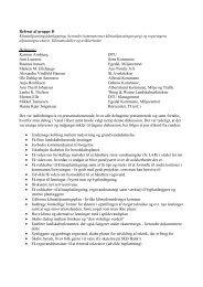 Referat klimascenarie 17 september 2010 - Vand i Byer