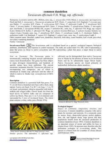 Tina Alaska Natural Products