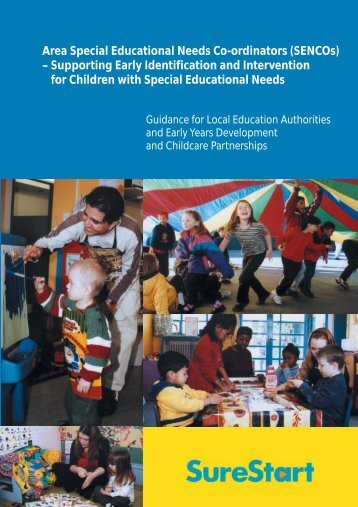 Area Special Educational Needs Co-ordinators ... - Niched.org
