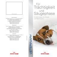 Trächtigkeit - ROYAL CANIN Tiernahrung GmbH & Co. KG