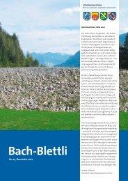 Nr. 22, Dezember 2012 - schwellenkorporationen.ch