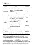 Projektplanung Menschenrechtsstadt Salzburg Plattform Plenum ... - Seite 3