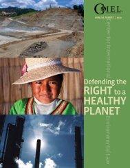 2010 - The Center for International Environmental Law