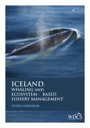 ICELAND, - Whale and Dolphin Conservation Society