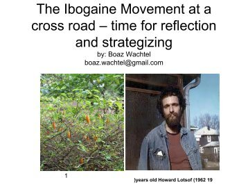 The Ibogaine Movement at a cross road – time for ... - Puzzle Piece!