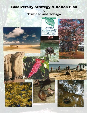 English version (PDF) - Convention on Biological Diversity