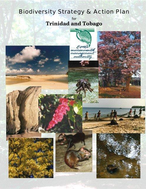 English version (PDF) - Convention on Biological Diversity