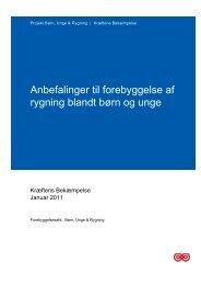 10_anbefalinge_2011