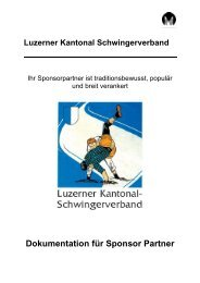 Dokumentation für Sponsor Partner - Luzerner Kantonal ...