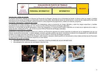 evaluación de puesto de trabajo rg-20-01 personal informático ...