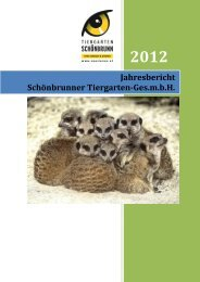 Jahresbericht 2012 - Tiergarten Schönbrunn