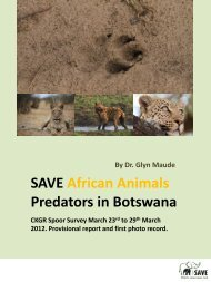 here - SAVE Wildlife Conservation Fund