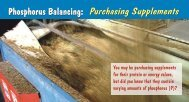 Phosphorus Balancing: Purchasing Supplements Phosphorus ...