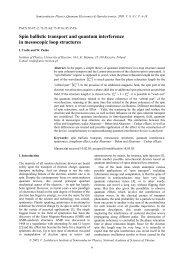 Spin ballistic transport and quantum intreference in mesoscopic loop ...