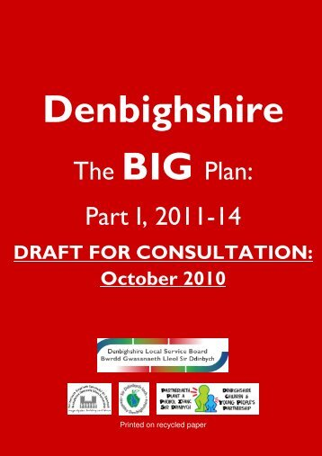 The BIG Plan - Denbighshire Voluntary Services Council