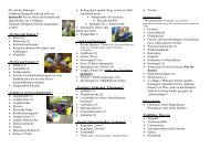 Spielmobil Flyer 2010 aktuell.pdf