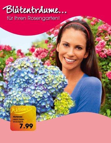 """""""Grüne Daumen""""-Tipp - Langohr Fachmarkt Mücke"""
