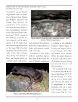 FROGLOG - Amphibian Specialist Group - Page 2