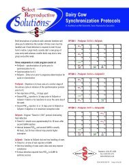 Dairy Cow Synchronization Protocols - Select Sires
