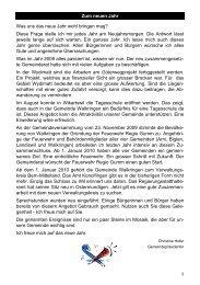 Infos Januar 2010 - Walkringen