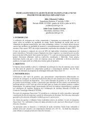 download (pdf - 57kb) - Cetem