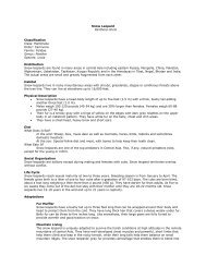 Snow Leopard 3DQWKHUD 8QFLD Classification ... - Denver Zoo