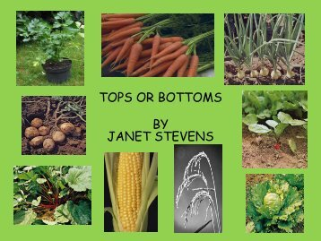TOPS OR BOTTOMS BY JANET STEVENS